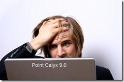 iStock_000002512608_ExtraSmall copy point calyx 9